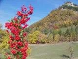 St Pancrace dans le Parc Naturel du Vercors (26 Drôme)