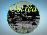 CAMPING OSTREA ** ILE D OLERON CHARENTE MARITIME