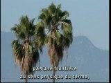 """Rue89 et les """"Belles Etrangères"""" 2009 1/2"""