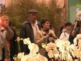 Ainterexpo - Floralies 2009 - Planète fleurs