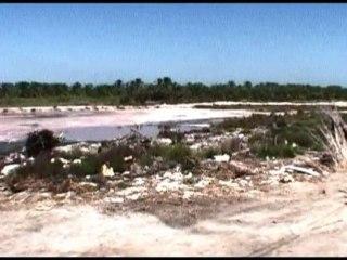 Climate Change - Egypt Salty Nile Estuary
