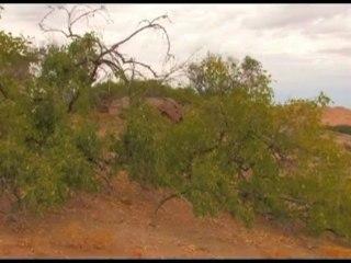 Climate Change - Namibia Diversity