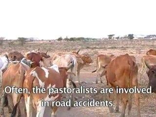 Climate Change - Kenya Maasai Herdsmen