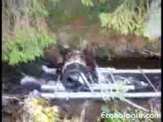 Machine à laver en moulin à roue à aubes, version 2
