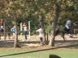 2 filles et 2 chevaux en CSO...