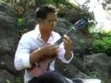 While my guitar de Georges Harrison by Jake Shimabukuro