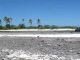 L'ile aux récifs Rangiroa
