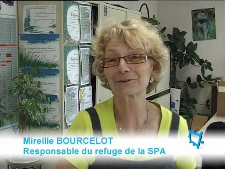 S P A De Valdelancourt Video Dailymotion