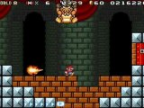 Super Mario Advance 4 : Super Mario Bros. 3 (fun speed run)