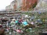 Macro-déchets... Seine-Maritime Normandie FRANCE