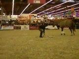 Salon du cheval 06/12/2009 - Démo Andy Booth