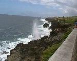 """Un """"souffleur"""" sur la côte sauvage de la Réunion"""