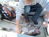pêche d'un brochet sur un montage texan en casting 96 cm