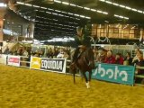 Equitation Western - Salon du Cheval 2OO9 !