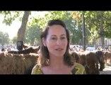 Ségolène Royal à la Foire des races mulassières de Niort