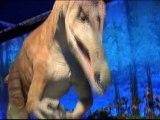 La faim des dinosaures au Palais de la découverte BA