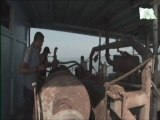 091213-Thalassa Gaza une prison a ciel ouvert p2