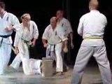 Festival des Arts martiaux:  Karaté Kyokushinkai