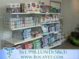 Vet Delray! Lund Animal Hospital, Delray Beach Veterinarian