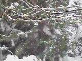 Tombe la neige depuis 3 jours!