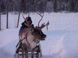 Pauline qui lutte pour faire avancer son renne