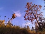 Mountain Bike Freeride Trails - Freeride Entertainment
