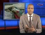 Haïti : L'acteur Jimmy Jean Louis en interview avec Voxafric