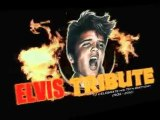 Elvis Tribute 2010 Big Beat Records