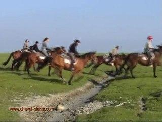La Baie du Mont Saint Michel a cheval