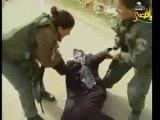 INFO : ENCORE UN Vol de terres à Hebron