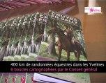 Yvelines : Conseil du Cheval
