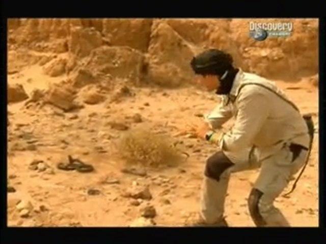 seul face a la nature le sahara 2