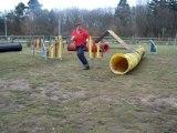 Dove entrainement agility 1