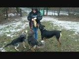 Les trois mousquetaires des Amis des Bêtes à Aix les Bains