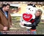 BigPlush.com GIANT STUFFED PIRATE VALENTINE TEDDY BEAR LARG