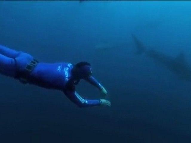 15 ans d'apnée, la passion de l'océan