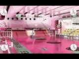 LFB 2009 2010 J 18 Bourges basket VS Lattes Montpellier