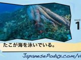 Learn Japanese - Learn with Japanese Marine Life Videos