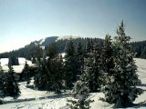 Randonnée raquettes à neige au Feldberg(1493m) du 16.02.10