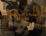 Thrill Is Gone#BB KING#cover#DUO