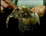 Mayas Civilisation Disparue 5/5
