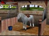 -Mission Equitation- mes chevaux