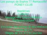PONEY-CLUB Les poneys de Sophie 77 à REMAUVILLE.