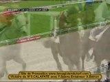 vidéo quinté a cagnes  27 février 2010 PRIX JACQUES GELIOT