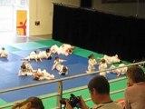 competition  debout du 28.02.10 003 cali fait joujou!!!