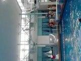lou plongeon piscine