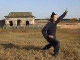 Bagua Zhang - Maître Chen Shiyu