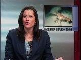 Lobster Season Closes
