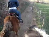 13 mars 2010 fifik au galop sur rubych & moi sur poney