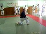 Révision de Nihon Tai-Jitsu: la chute avant pas à pas